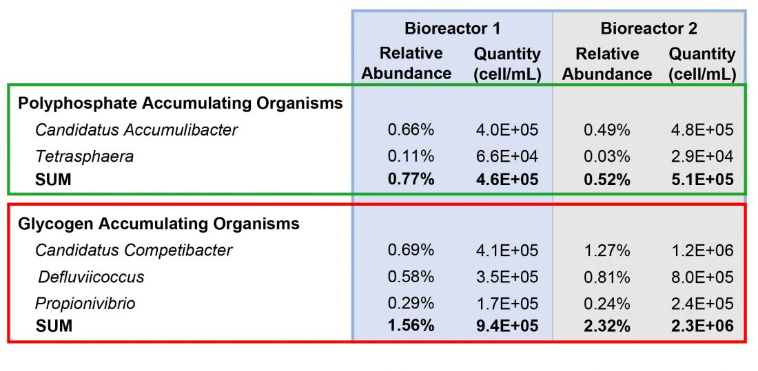 Results from Bioreactor Sample Sequencing