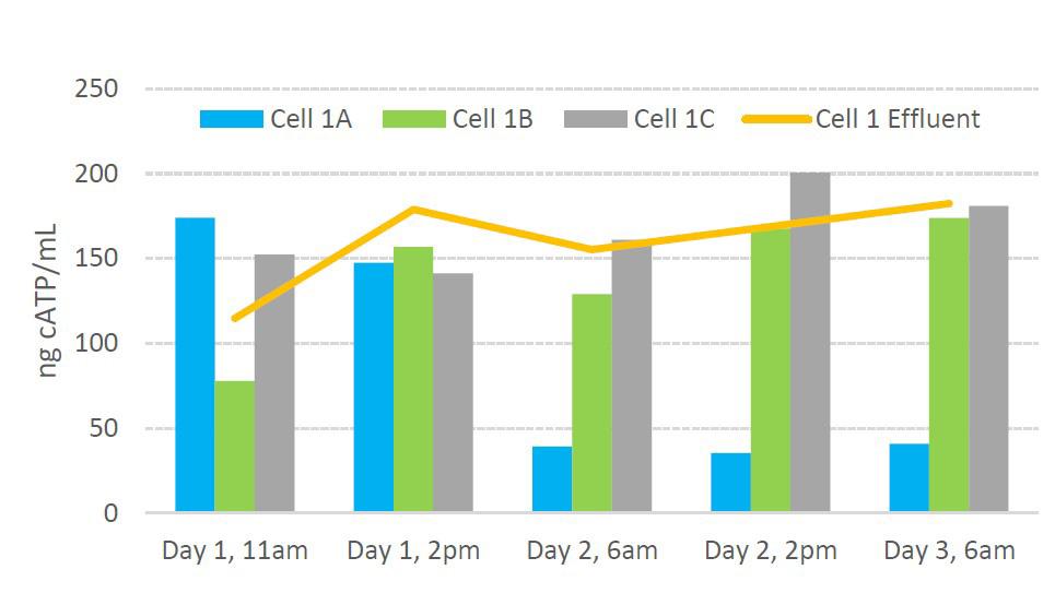 Cell 1 Biomass Distribution